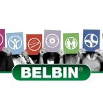 Training with Belbin